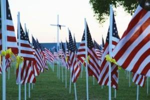 ALTAI™ Salutes: Memorial Day